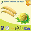 Alibaba China Supplier 100 Natural Banana