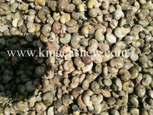 BEST QUALITY RAW CASHEW NUTS BENIN, TANZANIA, INDONESIA