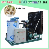 design in container Ice Flake Machine easy operate unit