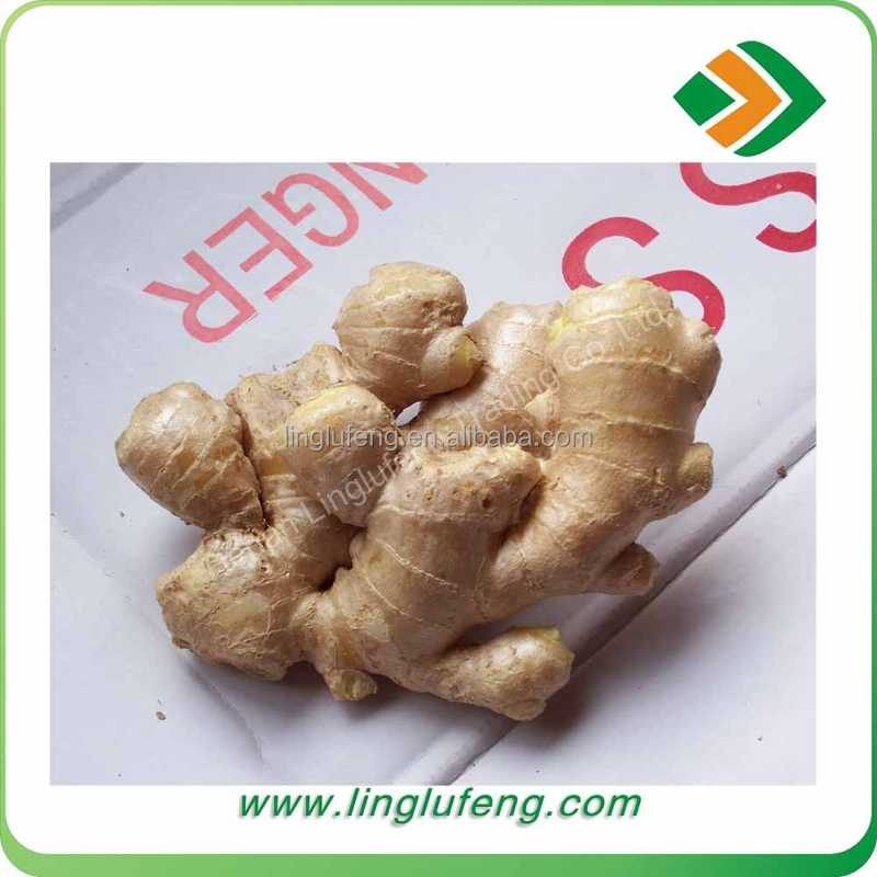 2017 new crop fresh ginger for sale buyer of dry ginger