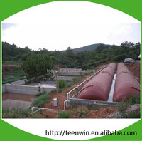 Teenwin big size soft biogas/digester Plant for cow farm waste treatment