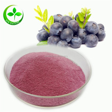Pure Natural Freeze Dried Wild Blueberry Juice Powder Bulk