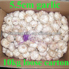 10kg carton china garlic price