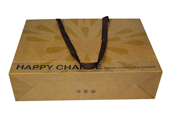 kraft paper treat bag/paper bags Chennai/kraft paper coffee bags with valve
