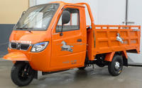 Chongqing rickshaw 250cc closed cabin cargo motor tricycle for india