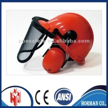 safety helmet with face shield and ear muff