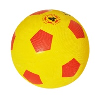 Portable inflatable fabric soccer ball Power module