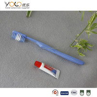cheap wholesale toothbrush with small toothpaste