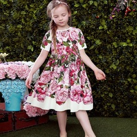 Princess Girl Lace Dress 2017 Designer Girls Dresses with Pink Rose Floral Printed Kids Dresses for Girls Clothes