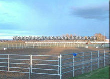 Livestock Panel Oval Rails Cattle Panel Horse Panel Yard
