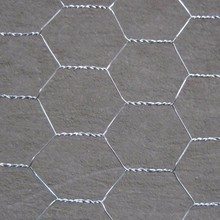 Hexagonal wire mesh netting,double-direction twisted hexagonal wire netting