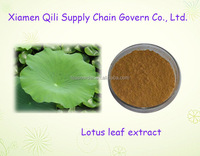 Herbal extract pure powder Lotus leaf extract powder 10:1
