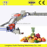 vegetable and fruit sorting machine with brush