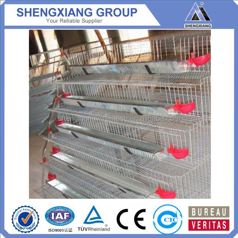 hight Quality Animal Cages wire mesh quail cage