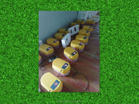 Newest 12 eggs incubator fully automatic incubator prices india for sale