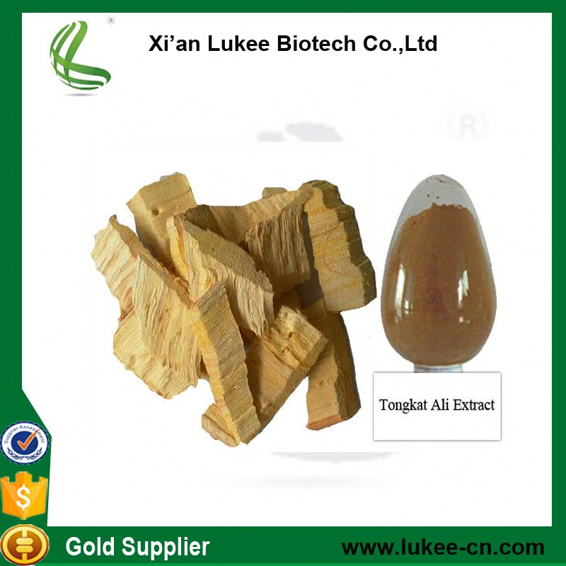 High Quality Tongkat Ali Root Powder
