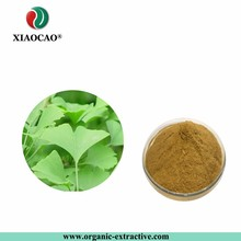 Water Soluble Ginkgo Biloba Extract / Ginkgo Biloba Leaf Extract Powder