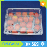 Clear vegetable fruit shape packaging container box