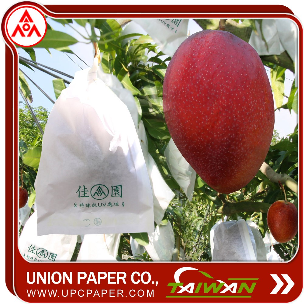 mango fruit growing protection wrapping paper bag with fruit protection paper bag