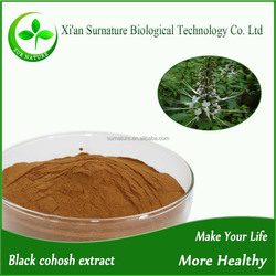 Top quality black cohosh extract/black cohosh herb