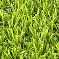 Hot Selling Natural Look Artificial Turf Grass, Natural Garden Carpet Grass