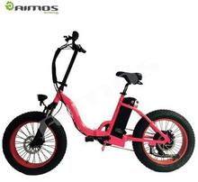 20 inch 48V whitebait snow folding electric fat vehicle