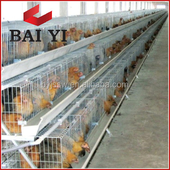 H Type, Layer Chicken Cages For Chicken Farm (Good Quality and Cheap Price)