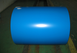 Prepainted Galvanized Steel Sheet-Coil