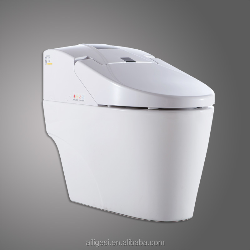 High Quality CE Certificated Sensor Electric Intelligent Toilet ZJS-07J