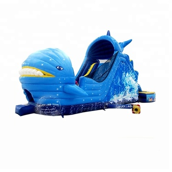 Giant Dolphin Slip N Slide Floating Inflatable Water Slide For Kids