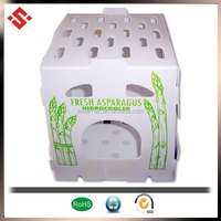 2015 printing vegetable box, PP asparagus packing box