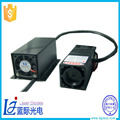 Hot Sale Low Decay 532nm Green 200mw Laser Module