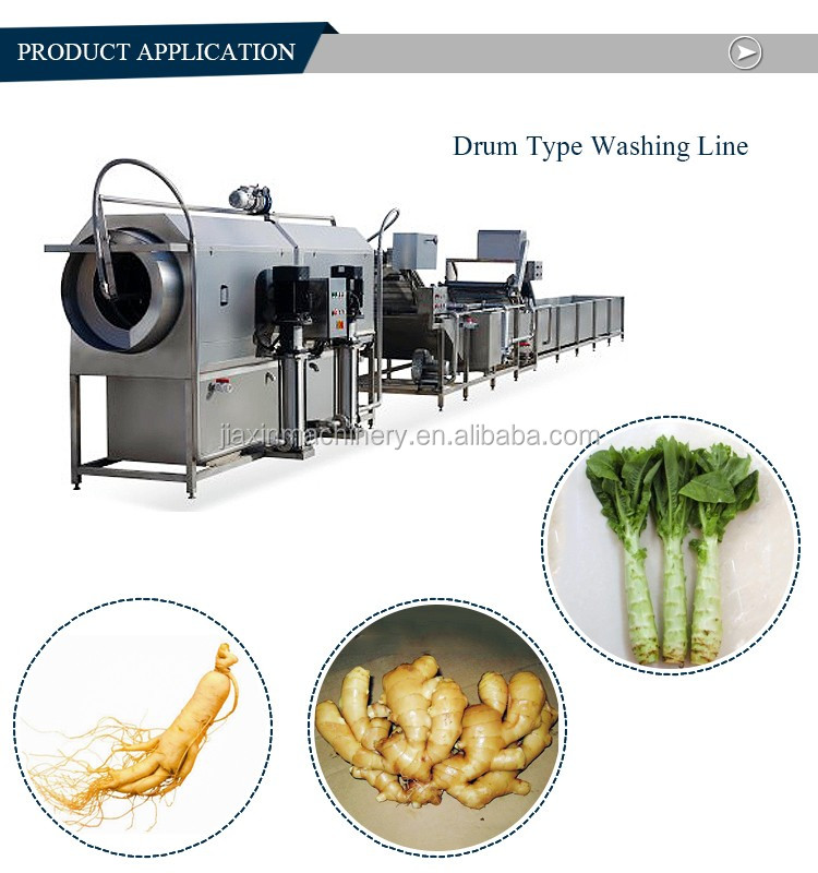 Hot sale automatic fruit and vegetable processing machinery
