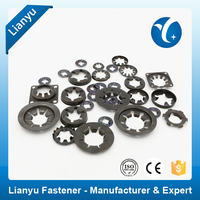 Bearing Retaining Washer Toothed Retainer Washer Manufacturer