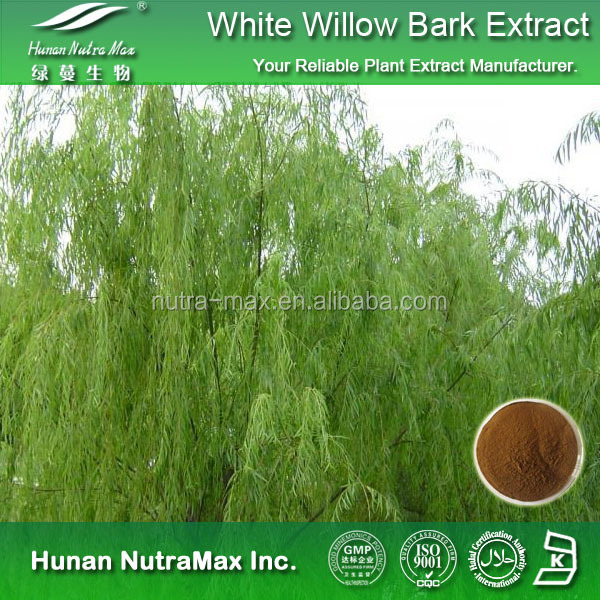 Manufacturer White Willow Bark 10: 1 Extract Powder