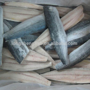 High Quality Newly Frozen Spanish Fish Mackerel Fillets