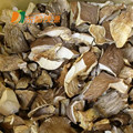 organic dried grey oyster mushroom oyster mushrom oyster pail