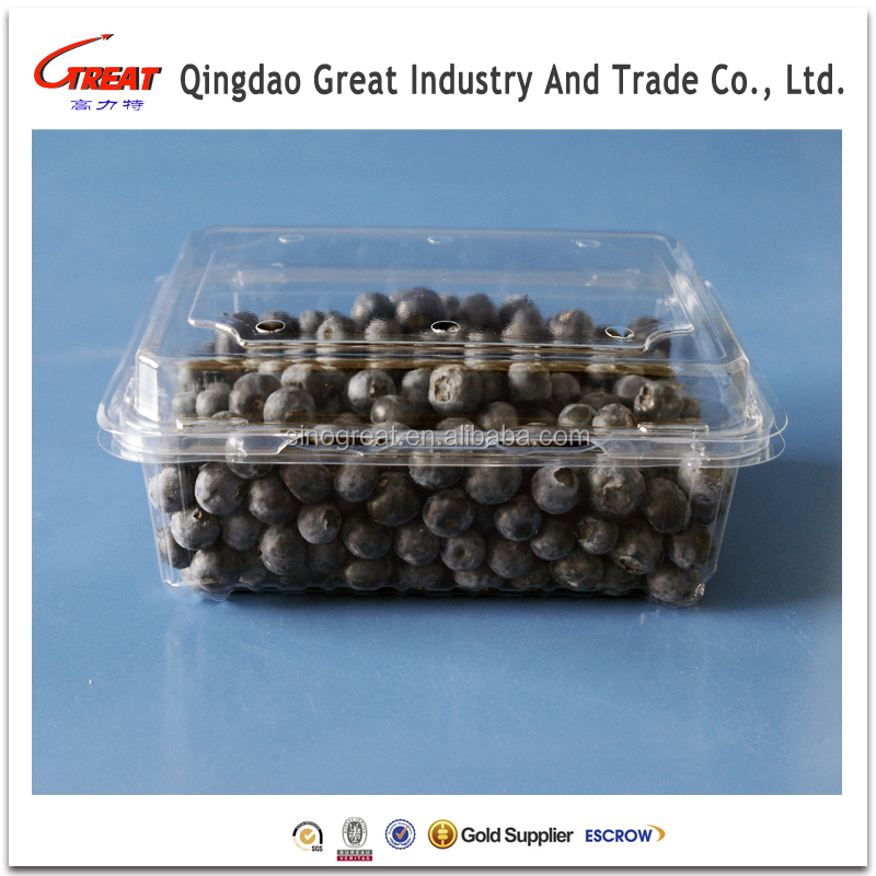 Blister Fruit Berry Packing Container wholesale Market