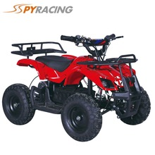 800W electric small ATV for kids