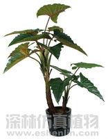 artificial rainbow plant artificial natural PE tree decoration home,garden,restaurant,supermarket,hotel