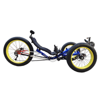 Drifting Speedway Wheels Electric Fat Tyre Recumbent Trike Adult Tricycle for Sale