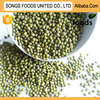 Exporter Business Oppotunities Green Mung Beans
