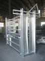 auto lock gate heavy duty cattle headlock