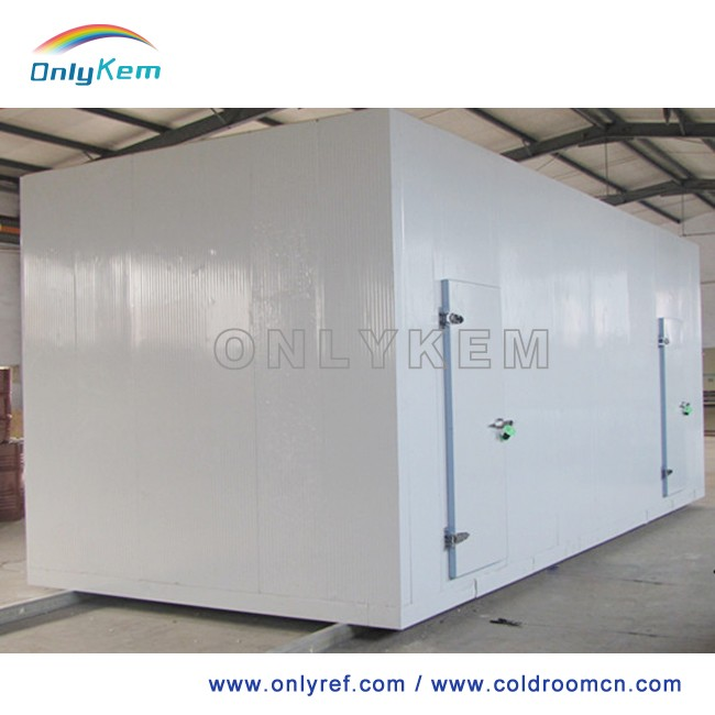 cold storage room for milk/fruit/vegetables/daily food