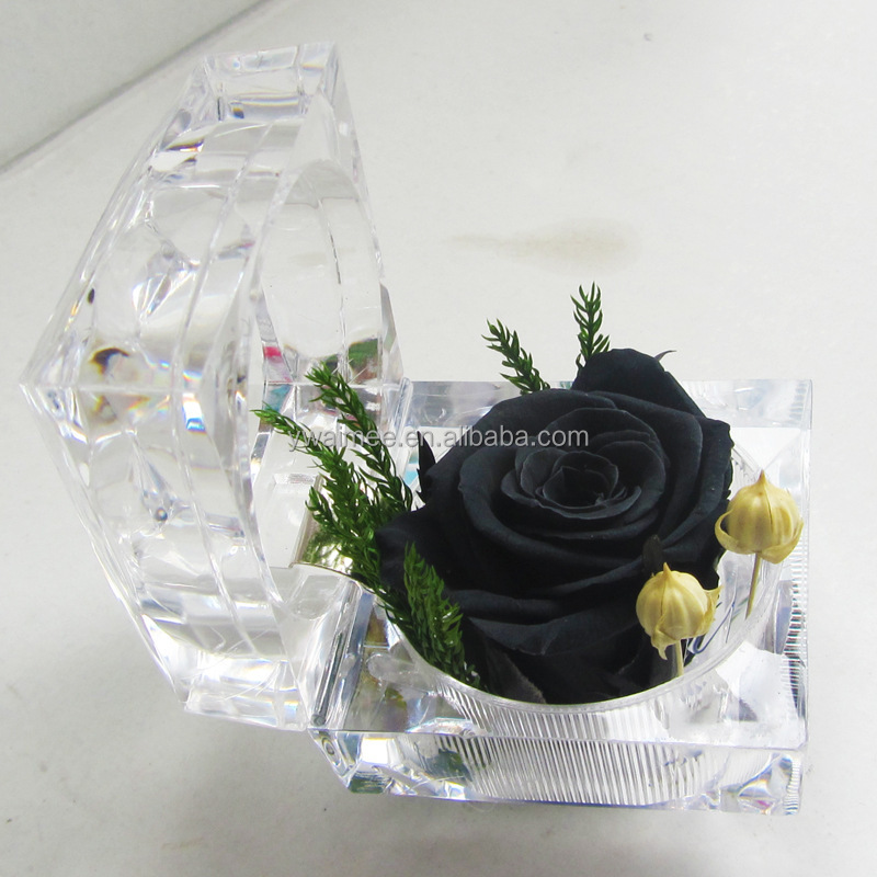 2016 Yiwu Aimee wholesale Valentine's Day gift import preserved fresh cut flower(AM-PF04)