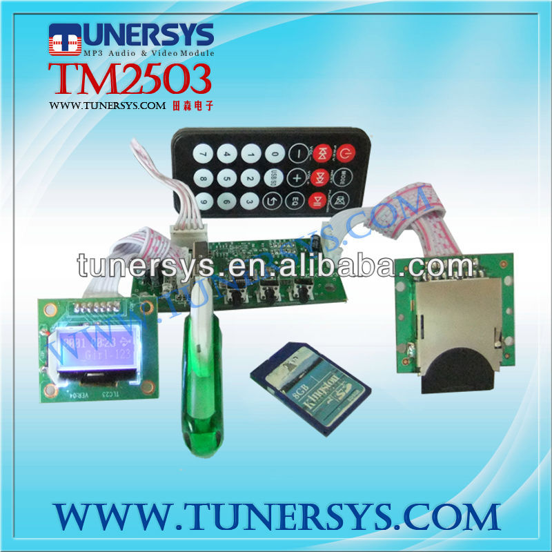 TM2503 car media player