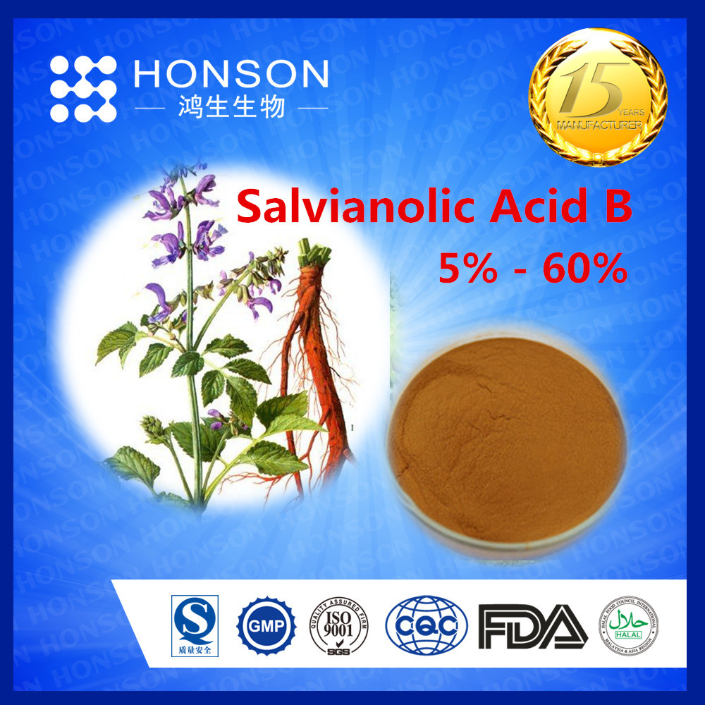 from Traditional Chinese Herbs Salvianolic Acid B red sage rooted extract