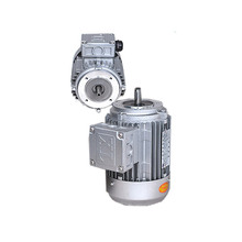 High quality 220V 1KW three phase electric motor