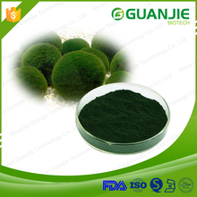 ISO Manufacturer Supply Chlorella And Spirulina Powder