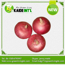 Fresh Peeled Onion - Dig The Top And Root Made In China